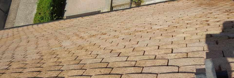 High Quality Roof Cleaning