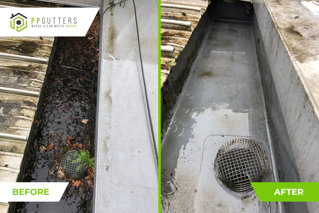 Commercial-gutter-clean-15