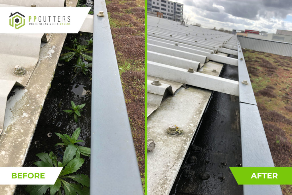 Commercial-gutter-clean-17